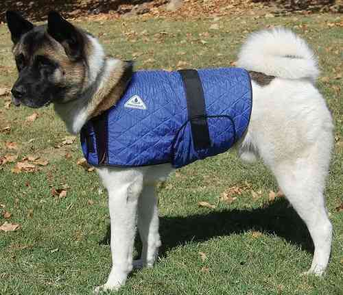 Techniche Hyper-Kewl Dog Cooling Coat - 20% Off