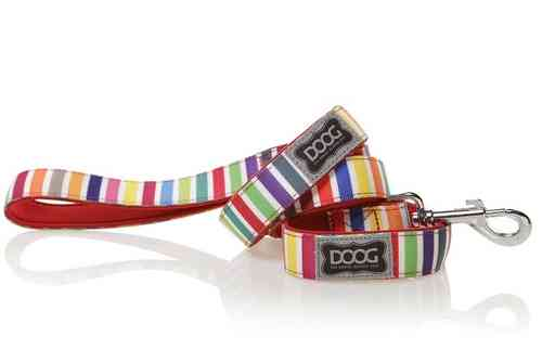 DOOG Scooby Dog Lead (Candy Stripe)