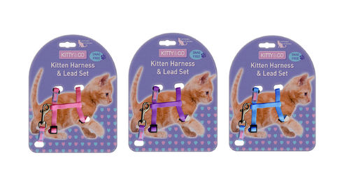 Kitty & Co Adjustable Kitten Harness & Lead Set