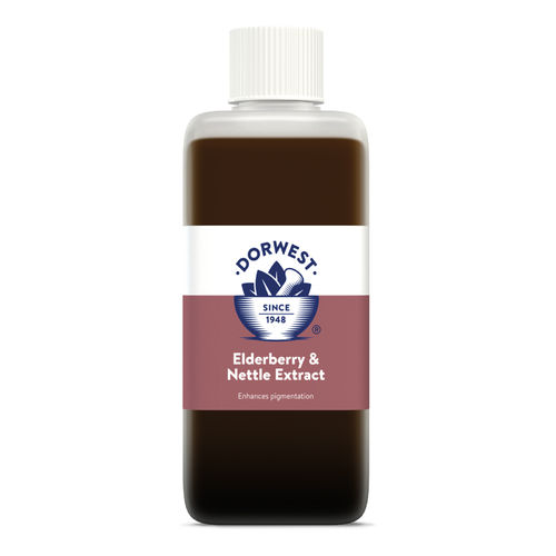 Dorwest Herbs Elderberry & Nettle Extract for Dogs and Cats