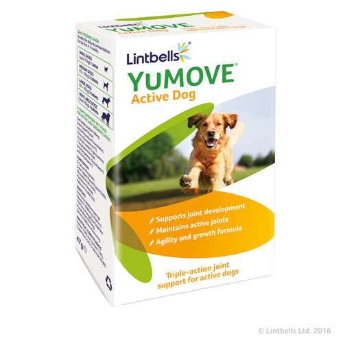 Lintbells YuMOVE Active Dog
