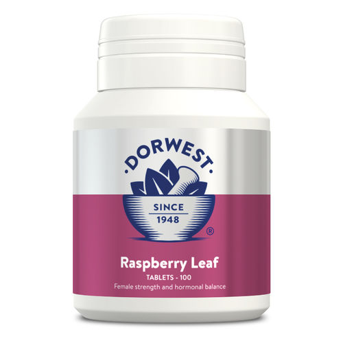 Dorwest Herbs Raspberry Leaf Tablets