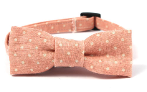 Feathers & Tails - Agnes Cat Bow Tie