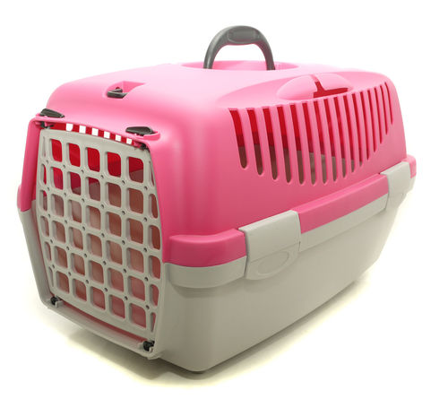 Gulliver 1 Carrier Fuchsia With Plastic Door