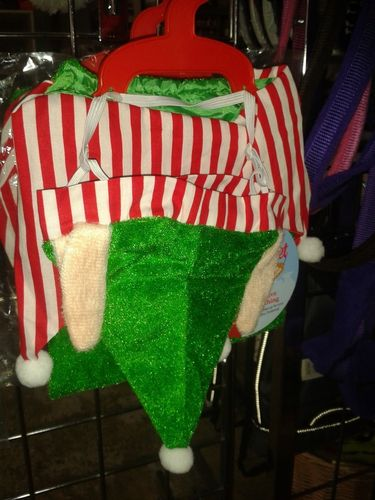 Rosewood Dog Elf Costume