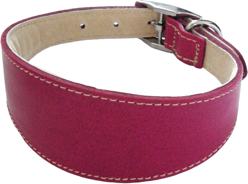 Dog & Co Greyhound Collar