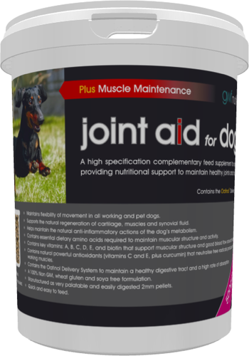 GWF Joint Aid For Dogs + Muscle Maintenance 500g Tub